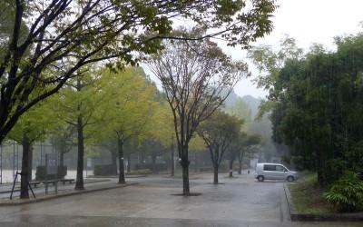 typhoon27